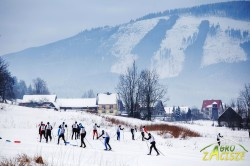 Zawody narciarstwa biegowego