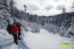 Zimowe szlaki